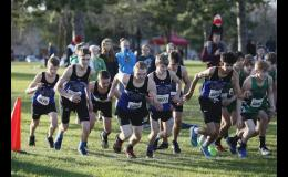 Colton Allen, Joe Liebsch, Paul Stacey, Ted Stacey, Connor Flan, Shawn Houdek, and Brian Sanchez started off their Section 6A race at Pierz Golf Course a day later than initially scheduled due to flooding. Many of the runners got personal best times.